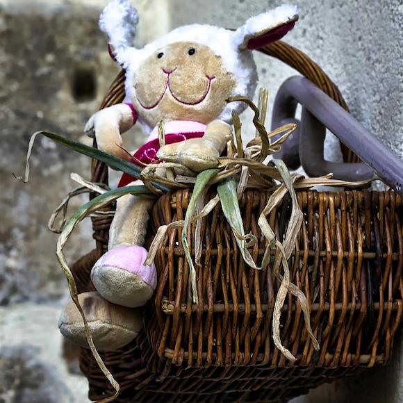 Basket of homegrown goods.