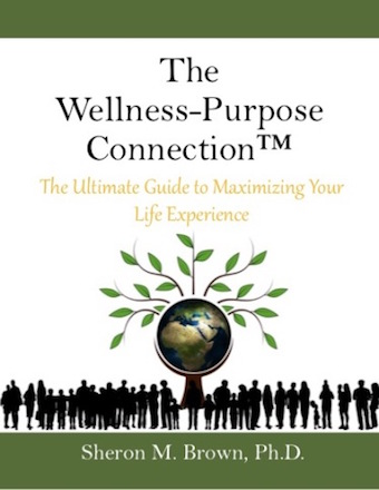 The wellness-purpose connection book cover